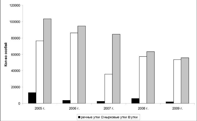 Соотношение учтённых речных и нырковых уток в период весенней миграции на Северном Сахалине в 2005–2009 годах
