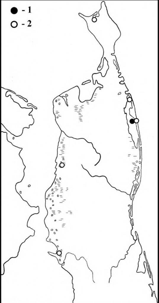 Места находок гнёзд (1) и встречи чёрной кряквы в летний период (2) на Северном Сахалине
