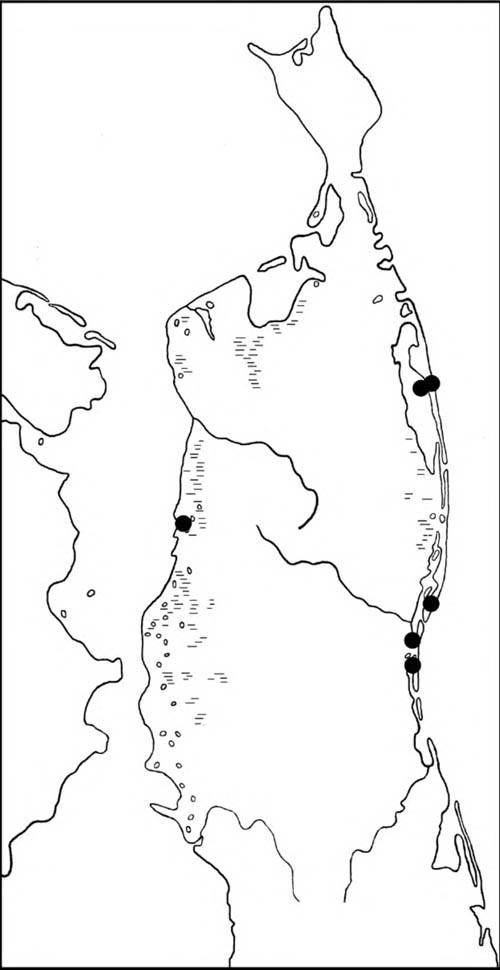 Места находок гнезд и выводков свиязи на Северном Сахалине