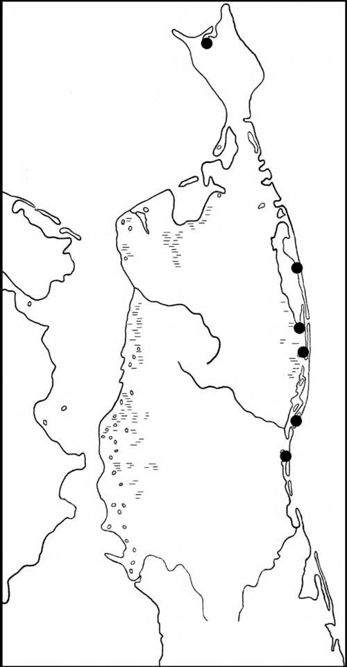 Места находок гнёзд и выводков чирка-трескунка на Северном Сахалине