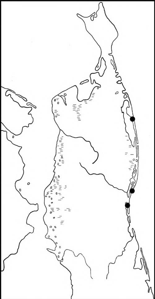 Места встреч выводков широконоски на Северном Сахалине