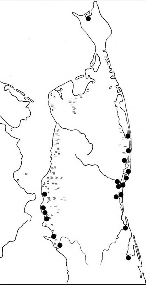Места находок гнёзд и выводков гоголей на Северном Сахалине