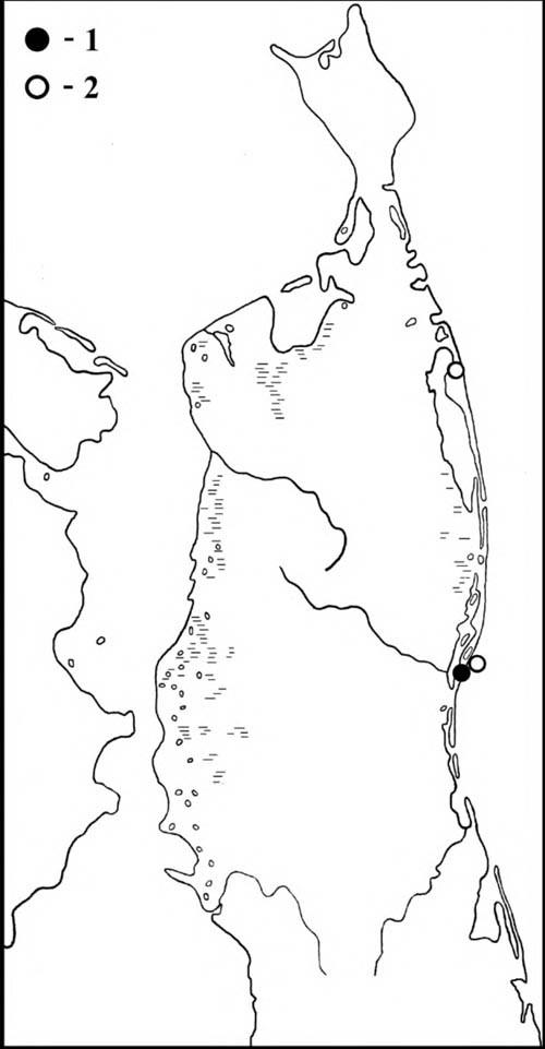 Места встреч пестроносого турпана (1) и выводка горбоносого турпана (2) на Северном Сахалине