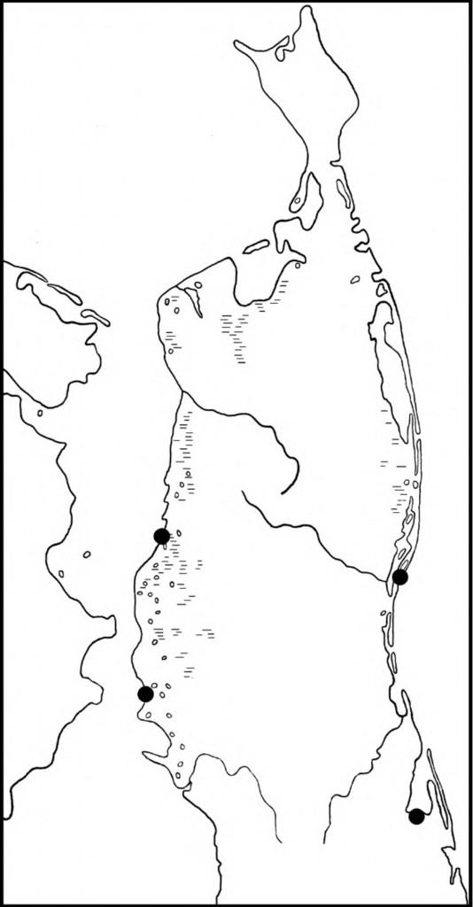 Встречи погонышей-крошек вгнездовой период наСеверном Сахалине