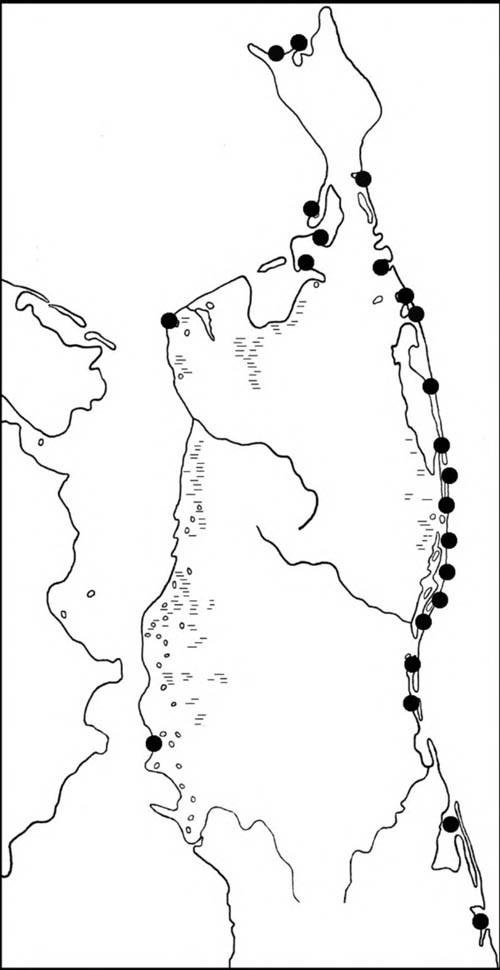 Места встреч песочников-красношеек впериод сезонных миграций