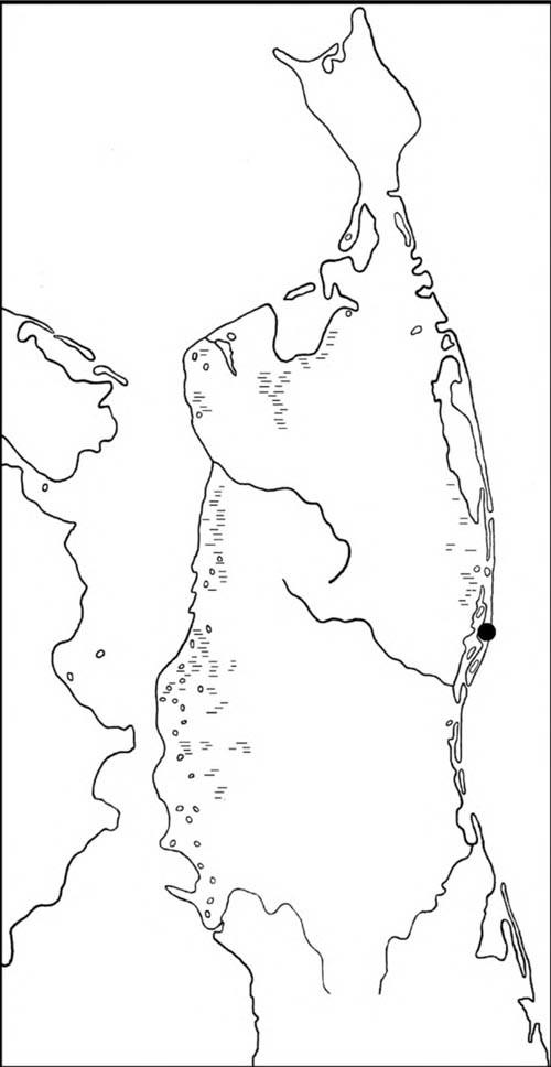 Место встречи американского бекасовидного веретенника наСеверном Сахалине