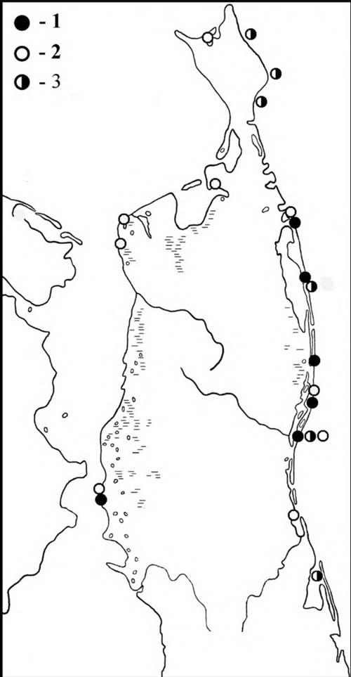 Места встреч сизых чаек впериод весенних (1) иосенних (2) перемещений, атакже впериод летних кочёвок (3)