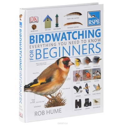 Birdwatching for Beginners: Everything You Need To Know